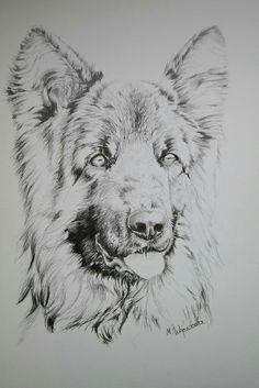 Dog. My drawing