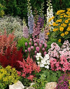 641 best flower borders cottage gardens images beautiful gardens rh pinterest com