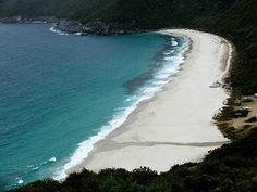 Albany Attractions - Shelley Beach