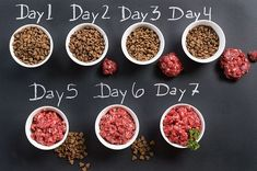"""Homemade Dog Food The """"Separate Meals"""" switch. How to transition your dog to a raw diet, gradually! Dog Raw Diet, Raw Food Diet, Raw Pet Food, Natural Dog Food, Raw Food For Puppies, Dog Recipes, Raw Food Recipes, Freezer Recipes, Freezer Cooking"""