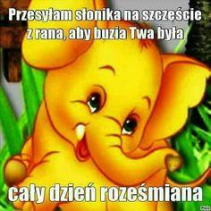 Weekend Humor, Man Humor, Winnie The Pooh, Good Morning, Disney Characters, Fictional Characters, Dance, Album, Funny