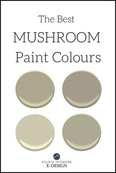 The Best Mushroom Paint Colours, Benjamin Moore and Sherwin Williams Kylie M INteriors E-design, online paint color consulting Benjamin Moore Exterior, Benjamin Moore Paint, Benjamin Moore Pashmina, Taupe Paint Colors, Exterior Paint Colors, Wall Colors, Grey Paint, Taupe Kitchen, Kitchen Paint