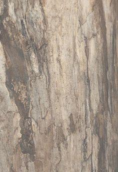 Revestir 2013 - Nas cerâmicas Petrifed Tree, a italiana Viva conseguiu a imagem de madeira petrifcada. Na cor corteccia beige, mede 90 cm com larguras entre 15 e 45 cm. Para todos os pisos e paredes.