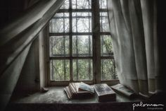 Also books can be abandoned... #books #abandond #housesabandoned