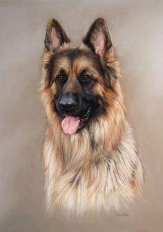 Pet Portraits - THE ART OF LISA OBER