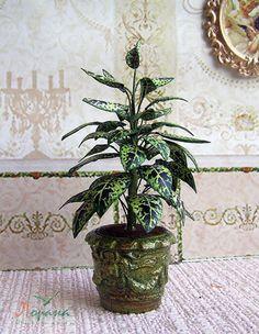 Dieffenbachia in einen Topf geben. Miniatur-Dieffenbachia. Realistische Pflanze für Ihr Puppenhaus. 01:12 Skala von ShtankoLarisa auf Etsy https://www.etsy.com/de/listing/503643951/dieffenbachia-in-einen-topf-geben