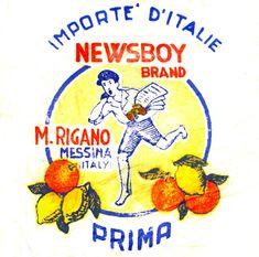 New fruit packaging paper Ideas Vintage Labels, Vintage Ads, Fruit Cartoon, Fruit Packaging, Fruit Shop, Orange Paper, Fruit Photography, New Fruit, Vintage Typography
