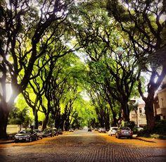 3 motivos para conocer Belgrano R - Loving Buenos Aires