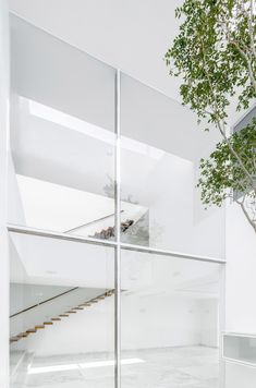 Grand window fronts peaceful courtyard inside Abraham Cota Paredes' V House