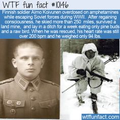 Finnish soldier Aimo Koivunen overdosed on amphetamines while escaping Soviet forces during WWII. After regaining consciousness, he skied more than 250 Wtf Fun Facts, Funny Facts, Funny Relatable Memes, Random Facts, Random Stuff, Speech Room, History Memes, History Facts, What The Fact