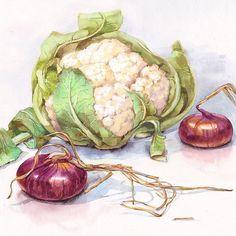 Цветная капуста и лук, прям суповой набор) жалко на рынке уже не так разнообразно, как пару месяцев назад.. Думаю уже пора завязывать с овощами.. #акварель #овощи #watercolor #watercolorpainting #aquarelle #art