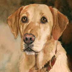 Yellow Labrador Retriever Print of Watercolor Dog Painting by EdieFaganArt on Etsy  Houston loves his pet portrait - he is the perfect yellow lab puppy.