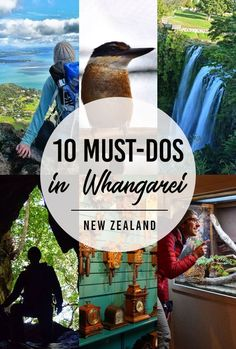10 Whangarei Must-Dos - NZ Pocket Guide New Zealand Travel Guide Visit New Zealand, New Zealand Travel, Visit Australia, Australia Travel, Places To Travel, Travel Destinations, Holiday Destinations, Travel Guides, Travel Tips