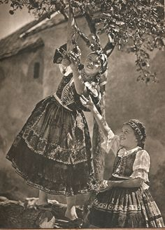 Maygar Monday: Life of a Hungarian Grape   the Diligent Observer Vintage Photographs, Vintage Photos, Folk Dance, Folk Costume, Costumes, Rare Pictures, Cultural, Beautiful Places To Visit, Historical Photos
