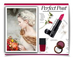 """""""Fall Statement Lipstick'"""" by dianefantasy ❤ liked on Polyvore featuring beauty, Witchery, Laura Geller, Fashion Fair, Wedding Belles New York, Arco, polyvoreeditorial, berrylips and statementlip"""