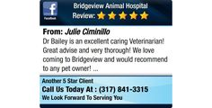 Dr Bailey is an excellent caring Veterinarian! Great advise and very thorough!  We love...