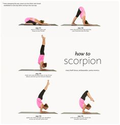 how to scorpion