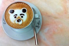 latte art, animal faces, panda, cappuccino, bears, food, drink, little animals, bear coffe