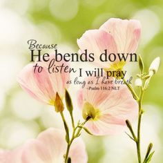 Because He bends down to listen, I will pray as long as I have breath ~ Psalm 116:2