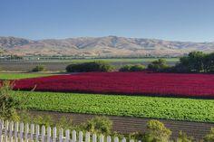 San Juan Valley California http://www.veeseire.ee/search/label/Pildialbum