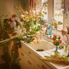 Ideas For Plants Aesthetic Inspiration No Rain, Flower Aesthetic, Aesthetic Yellow, Aesthetic Dark, Aesthetic Pastel, My New Room, Aesthetic Pictures, Wall Collage, Lily Donaldson