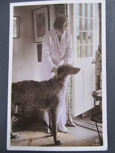 Vintage postcard - Deerhound Dog and Gladys Cooper British Actress - Real Photo