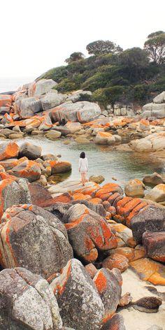 Spending time in the Bay of Fires in Tasmania - by @taramilktea on IG