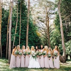Bridesmaids in blush bridesmaids dresses and lots of them here by Heather Prosser Photography Blush Bridesmaid Dresses, Bridesmaids, Wedding Dresses, Toronto Photography, Image Photography, Wedding Blog, Wedding Planner, Wedding Stills, Fall Is Here