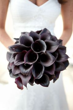 Calla Lilly Bouquet - love the contrast! Dark flowers held next to white dress!! This color is fantastic, however I would do half white, half of this color because the contrast would be too much for my taste standing alone.