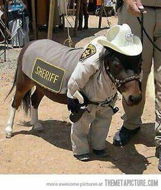 Pony Deputy