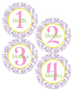 MONTHLY Milestone STICKERS  Damask Baby Month by BabyStickerCo, $9.00