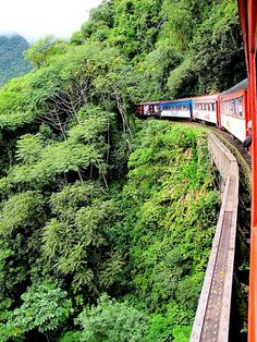Riding the Serra Verde Express: World's Only Train to Cross the Atlantic Forest : TreeHugger