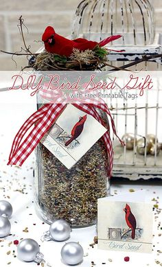 Homemade Gift for Bird Lovers - Tutorial. Such an EASY HANDMADE GIFT IDEA! Today we have a quick and easy DIY Bird Seed with Free Printable Tags for you. It makes such a wonderful gift for that special Natural Lover in your life! Homemade Christmas, Diy Christmas Gifts, Holiday Crafts, Christmas Baskets, Christmas Scenes, Christmas Wrapping, Christmas Decor, Christmas Wreaths, Xmas