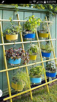 Plant Hanger More