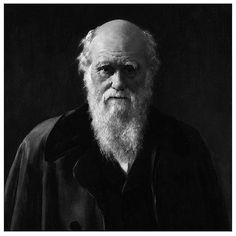 """Charles Darwin // """"It is not the strongest of the species that survive, nor the most intelligent, but the one most responsive to change."""""""