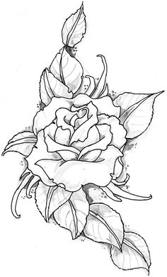 rose_tattoo_image_by_eltattooartist-d5908jw.jpg 1,548×2,567 pixel