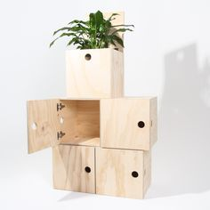Large Crates with Hinged Doors