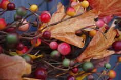 Fall Wreath  Berries and Leaves by GreenwoodWreaths on Etsy