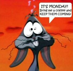 Good Morning Funny, Morning Humor, Good Morning Wishes, Monday Pictures, Funny Pictures, Monday Pics, Coffee Quotes, Coffee Humor, Cyber Monday