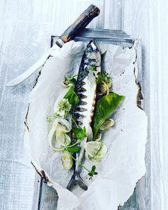 Grilled mackerel Scomber Scombrus summerstyle