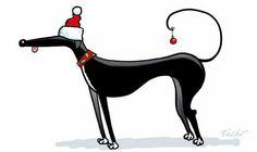 Christmas greyhound! by Richard Skipworth
