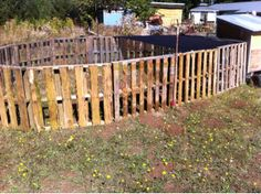 Pallet chicken pen. @Denise Roberts pallets and chickens all in one!!