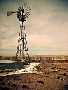 Windmill in a Sheep Corral, Iron County, Utah