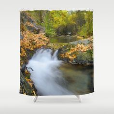 Into the autumn forest. Shower Curtain by Guido Montañés - $68.00