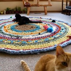 I love this rug. Originally saw this idea on Farmama's blog. So many crafters have shared in this beautiful and relaxing pastime...