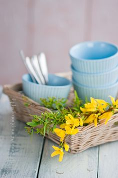flower in a basket with cups | Flickr - Photo Sharing!