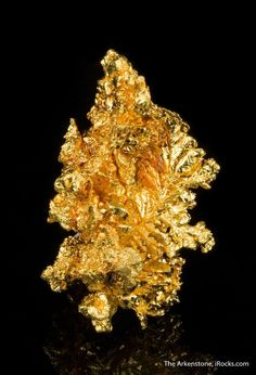 Gold, Recorder claim, Mariposa Co., California, USA, Miniature, 4.2 x 2.5 x 2.2 cm, A miniature, this leaps out at the eye., For sale from The Arkenstone, www.iRocks.com. For more details on this piece and others, visit http://www.irocks.com/minerals/specimen/45319