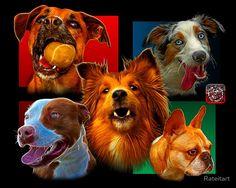 Dog Art Comp 0001 by Rateitart