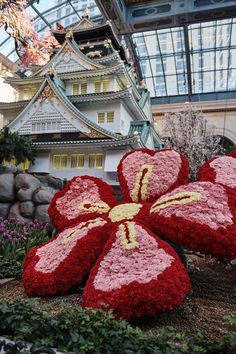 Featuring fresh flowers and an intricate replica of the Osaka Castle, the spring display at the Bellagio Conservatory & Botanical Garden is a can't-miss this spring in Las Vegas. Bellagio Conservatory, Osaka Castle, Fresh Flowers, Botanical Gardens, Las Vegas, Stuff To Do, Ms, Jackson, Wanderlust