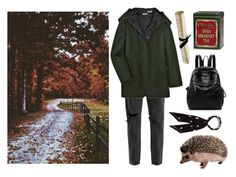 """""""A hedgehog's trail"""" by mozart-and-coffee ❤ liked on Polyvore featuring RE/DONE, Miu Miu, Branca, Rockins and vintage"""